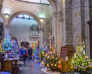 Tavistock Christmas Tree Festival