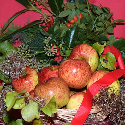 Fruit & Evergreen