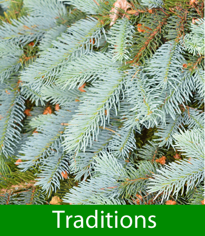 Christmas Traditions and Customs
